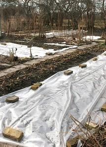 Plastik til afdækning af kartofler